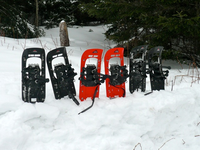Snowshoes in a line