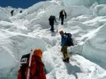 First Run through the Icefall