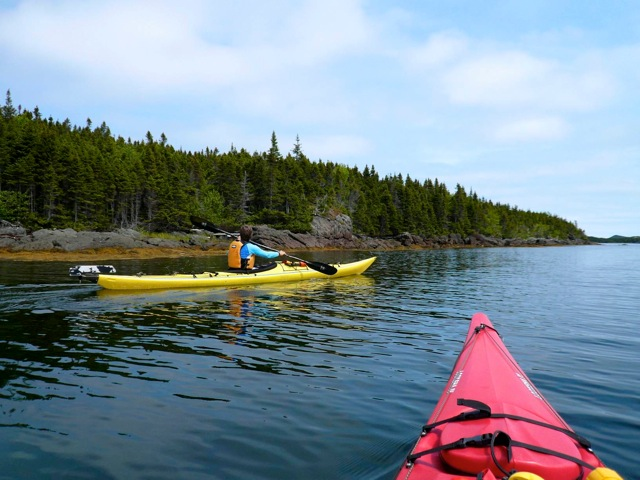 Sea kayaking doesn't get much better than this